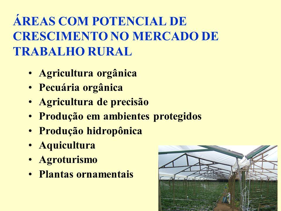 ÁREAS COM POTENCIAL DE CRESCIMENTO NO MERCADO DE TRABALHO RURAL