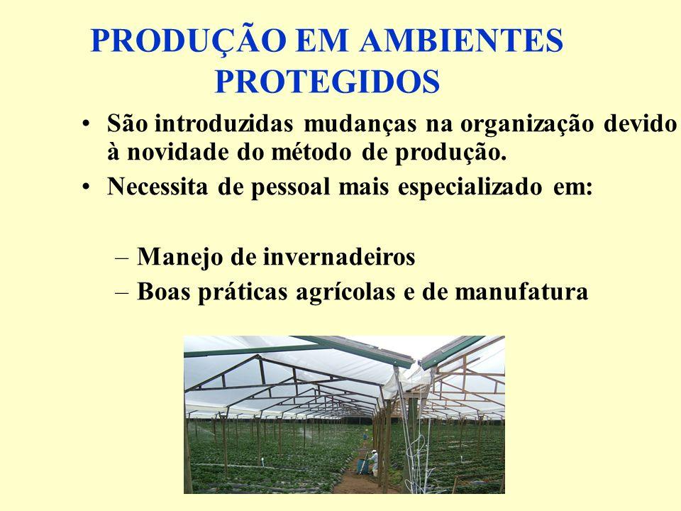 PRODUÇÃO EM AMBIENTES PROTEGIDOS