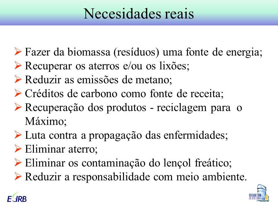 Necesidades reais Fazer da biomassa (resíduos) uma fonte de energia;