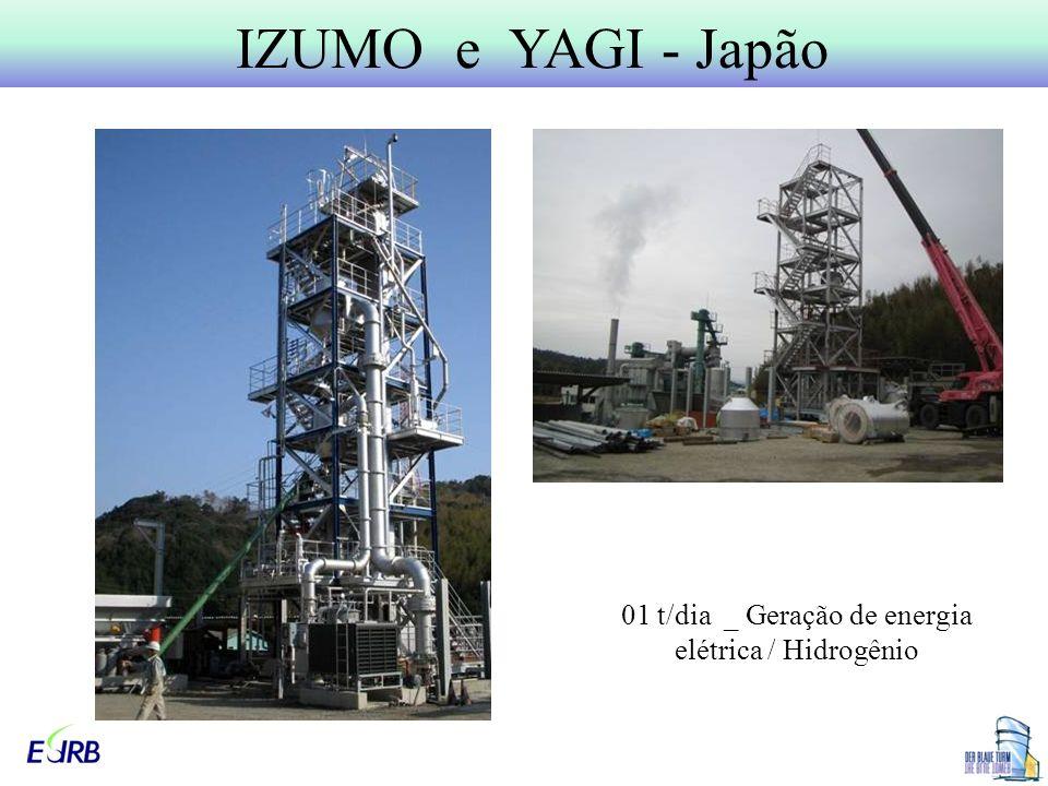 01 t/dia _ Geração de energia elétrica / Hidrogênio
