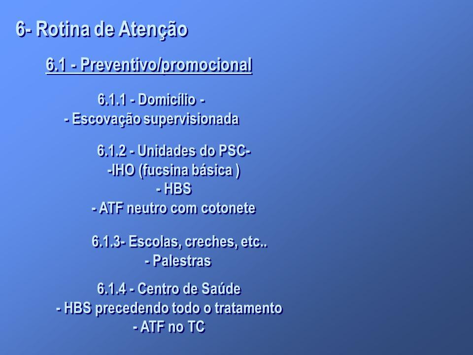 6- Rotina de Atenção 6.1 - Preventivo/promocional 6.1.1 - Domicílio -