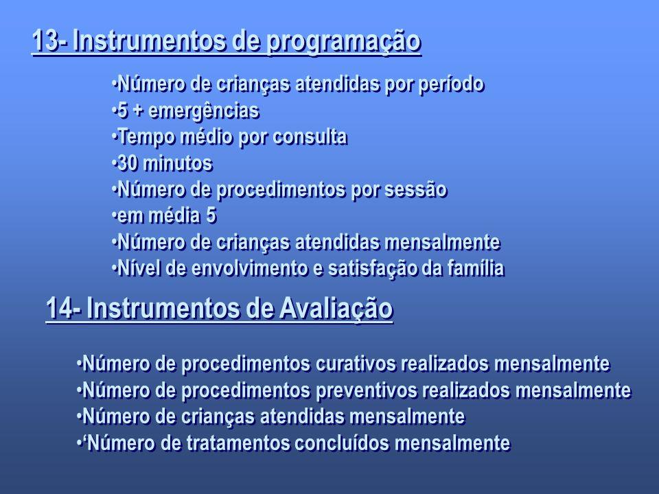 13- Instrumentos de programação 14- Instrumentos de Avaliação