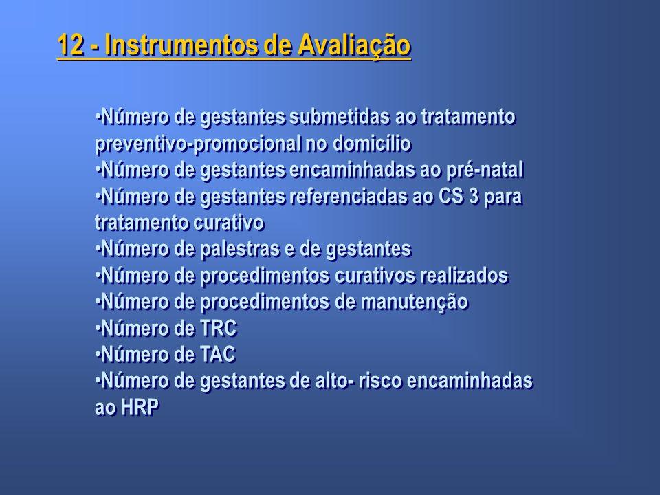 12 - Instrumentos de Avaliação