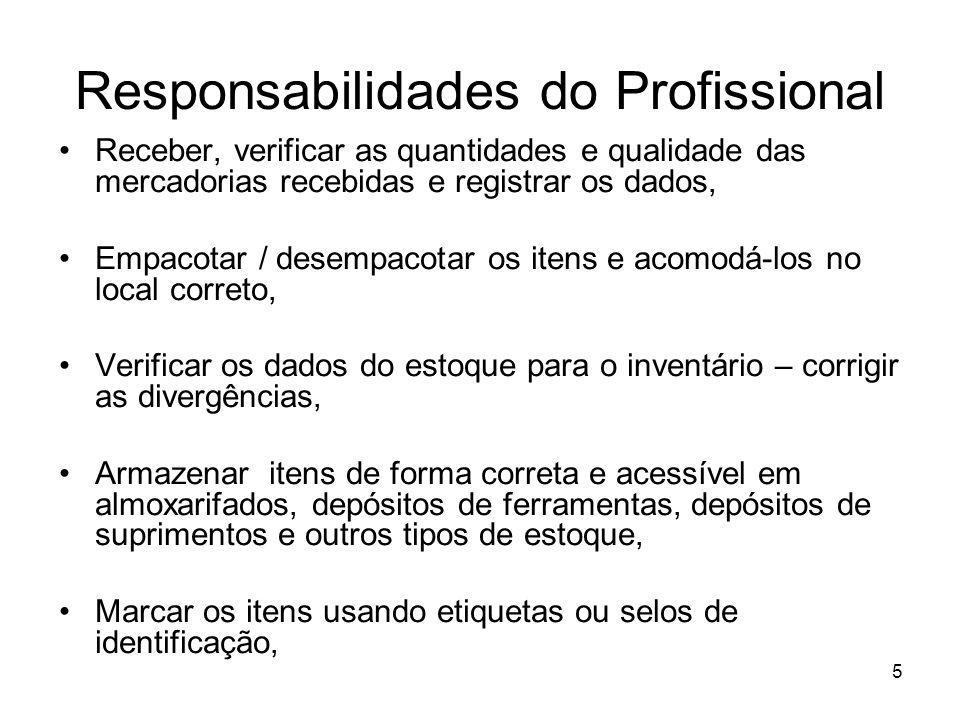 Responsabilidades do Profissional