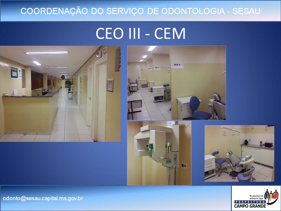 CEO III - CEM