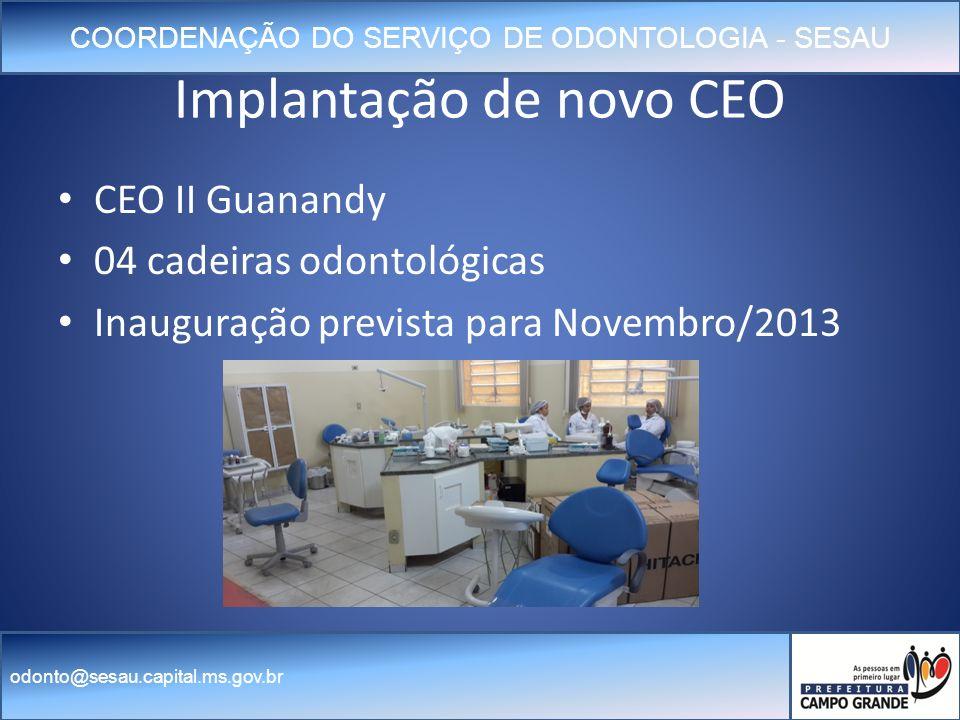 Implantação de novo CEO