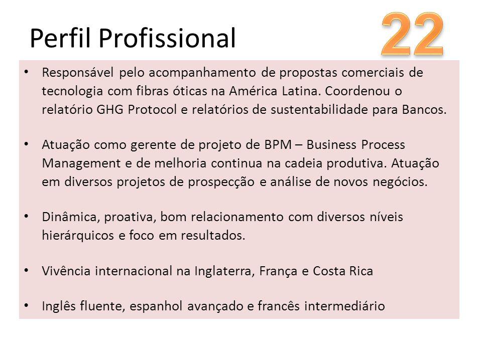 22 Perfil Profissional.