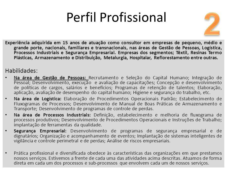 2 Perfil Profissional Habilidades: