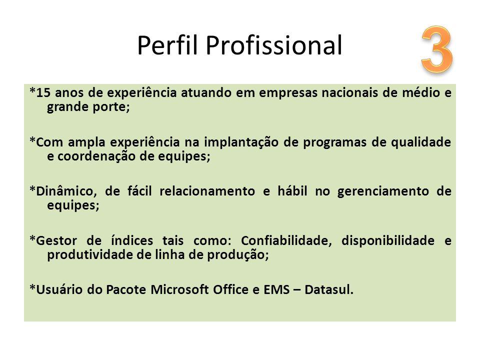 3 Perfil Profissional. *15 anos de experiência atuando em empresas nacionais de médio e grande porte;