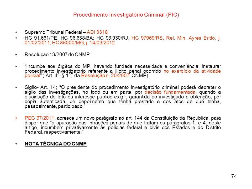 Procedimento Investigatório Criminal (PIC)