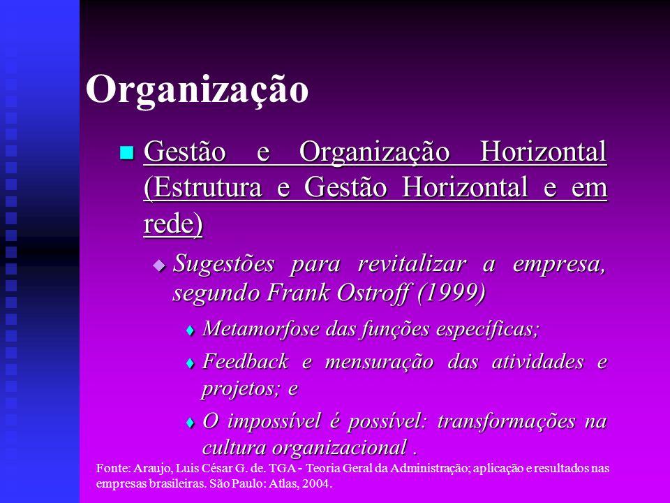 Organização Gestão e Organização Horizontal (Estrutura e Gestão Horizontal e em rede)