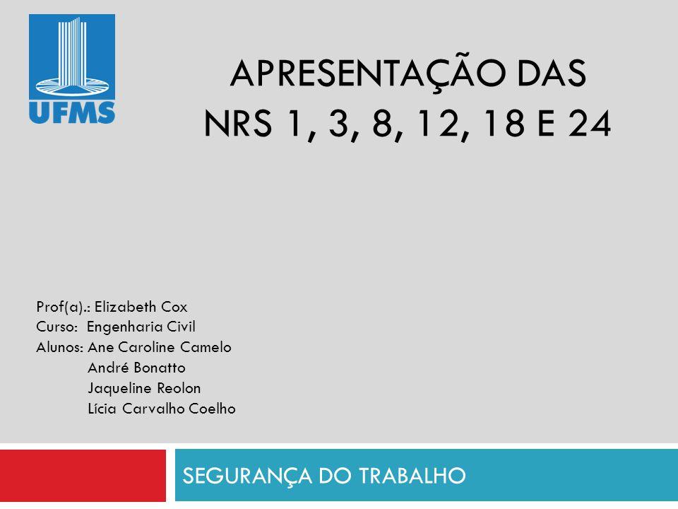APRESENTAÇÃO DAS NRS 1, 3, 8, 12, 18 E 24 SEGURANÇA DO TRABALHO