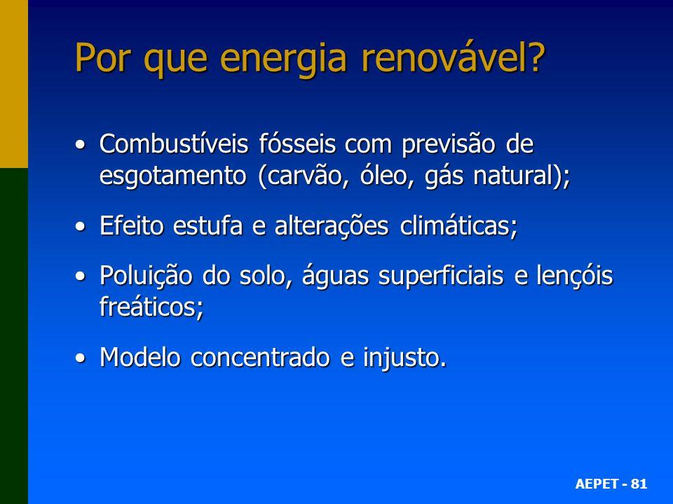 Por que energia renovável