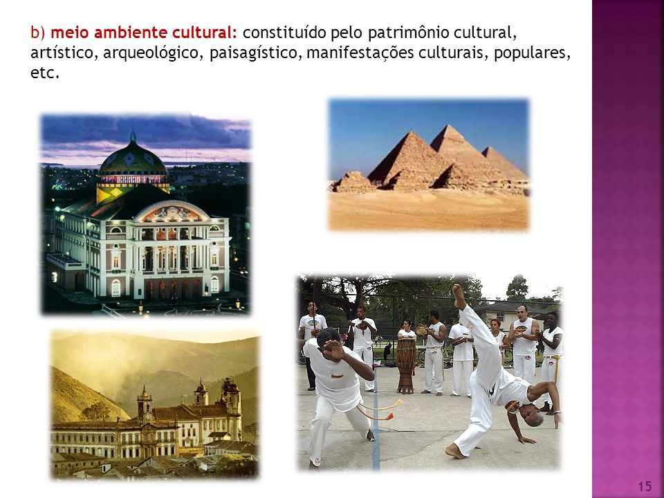 b) meio ambiente cultural: constituído pelo patrimônio cultural, artístico, arqueológico, paisagístico, manifestações culturais, populares, etc.