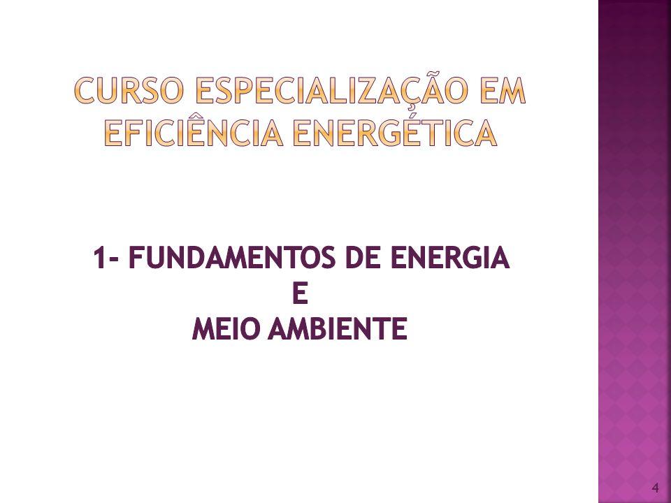 CURSO ESPECIALIZAÇÃO EM EFICIÊNCIA ENERGÉTICA 1- FUNDAMENTOS DE ENERGIA E MEIO AMBIENTE