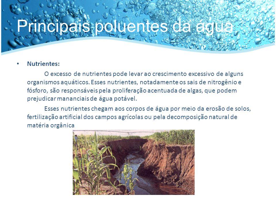 Principais poluentes da água