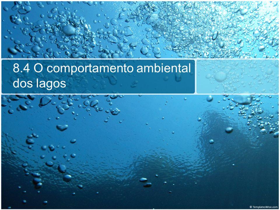 8.4 O comportamento ambiental dos lagos