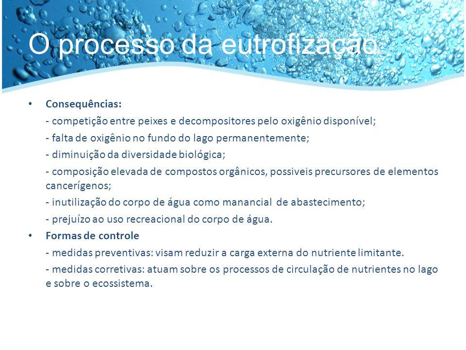O processo da eutrofização