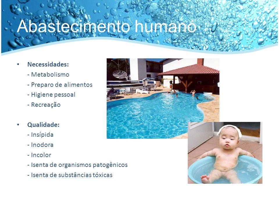 Abastecimento humano Necessidades: - Metabolismo