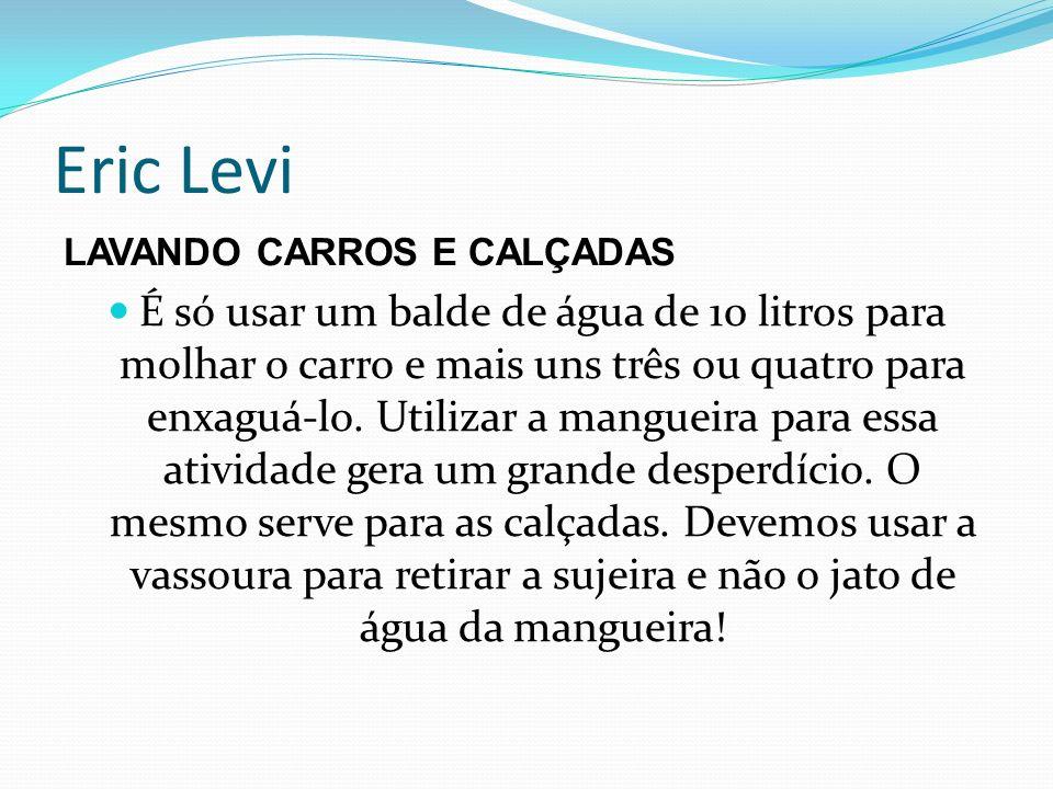 Eric Levi LAVANDO CARROS E CALÇADAS.
