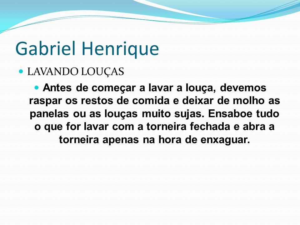 Gabriel Henrique LAVANDO LOUÇAS