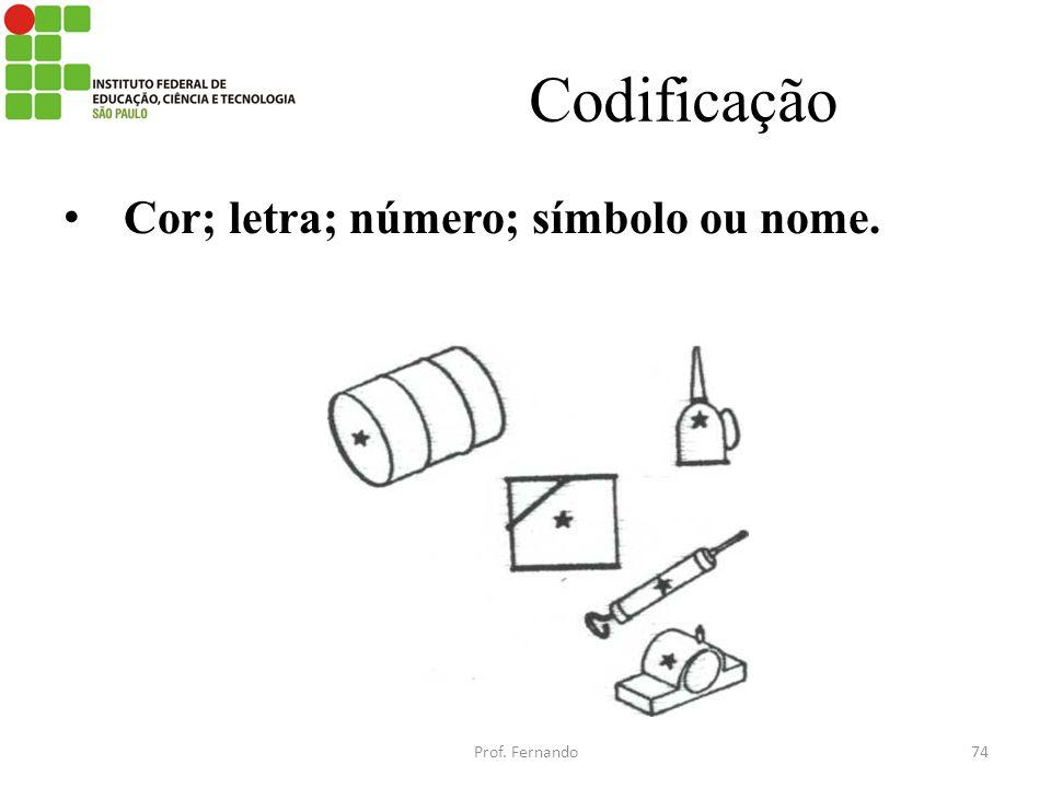 Codificação Cor; letra; número; símbolo ou nome. Prof. Fernando