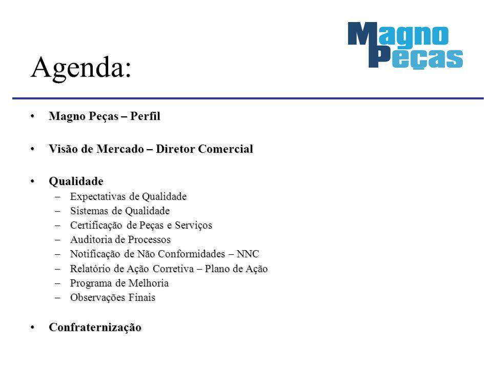 Agenda: Magno Peças – Perfil Visão de Mercado – Diretor Comercial
