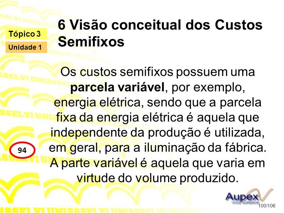 6 Visão conceitual dos Custos Semifixos