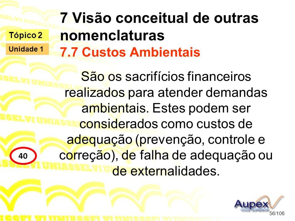 7 Visão conceitual de outras nomenclaturas 7.7 Custos Ambientais