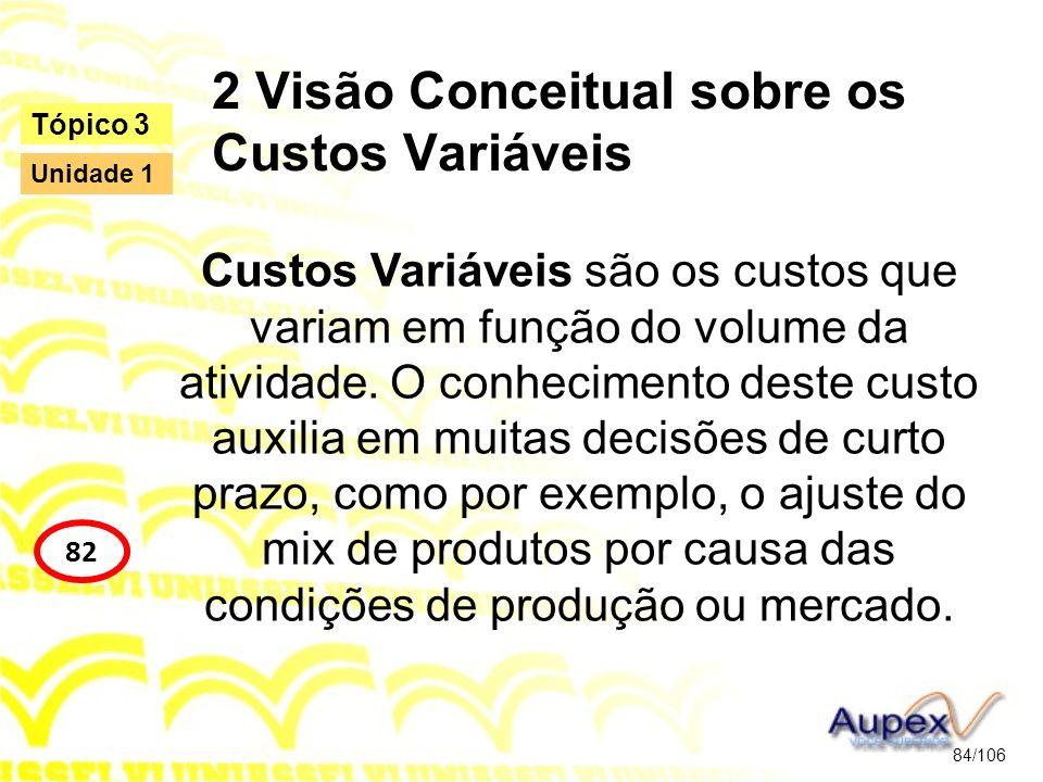 2 Visão Conceitual sobre os Custos Variáveis