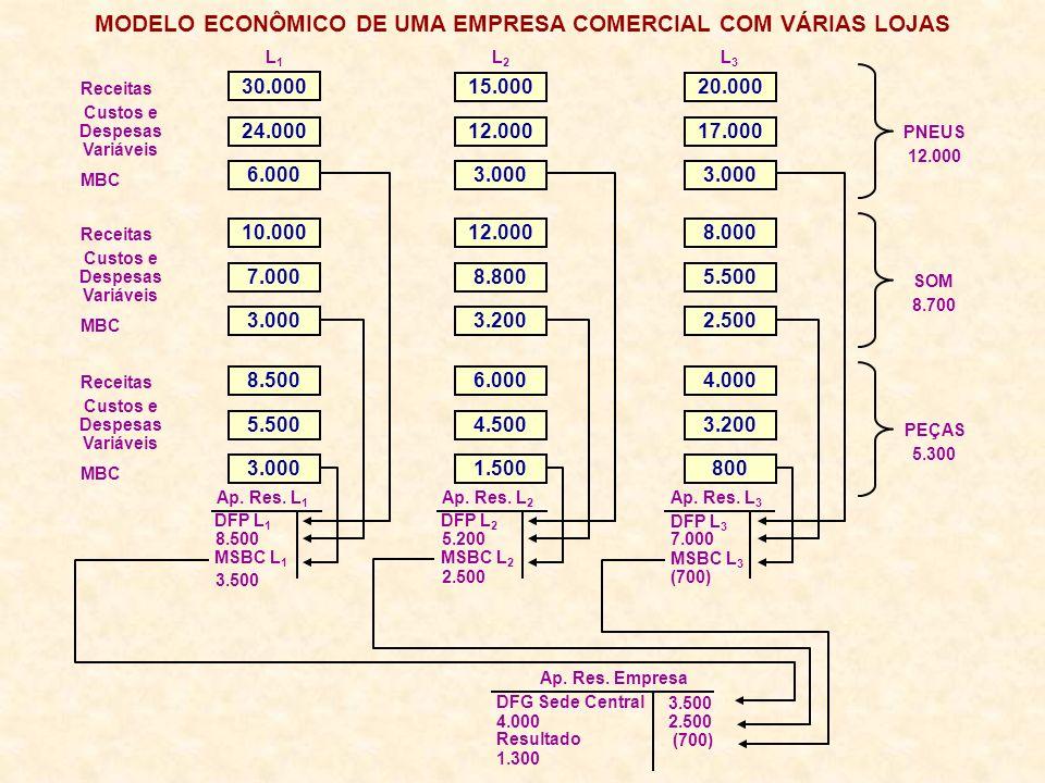 MODELO ECONÔMICO DE UMA EMPRESA COMERCIAL COM VÁRIAS LOJAS