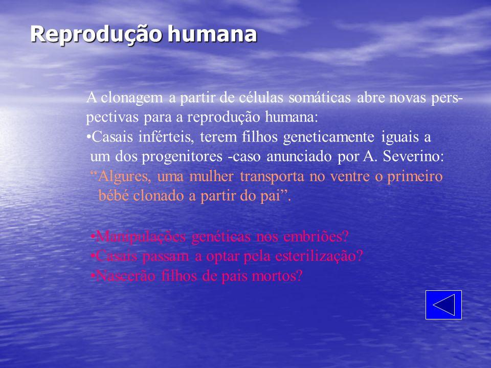 Reprodução humana A clonagem a partir de células somáticas abre novas pers- pectivas para a reprodução humana: