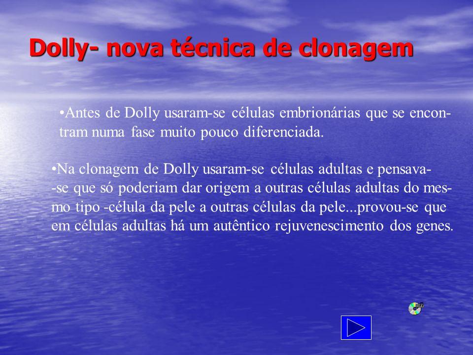 Dolly- nova técnica de clonagem