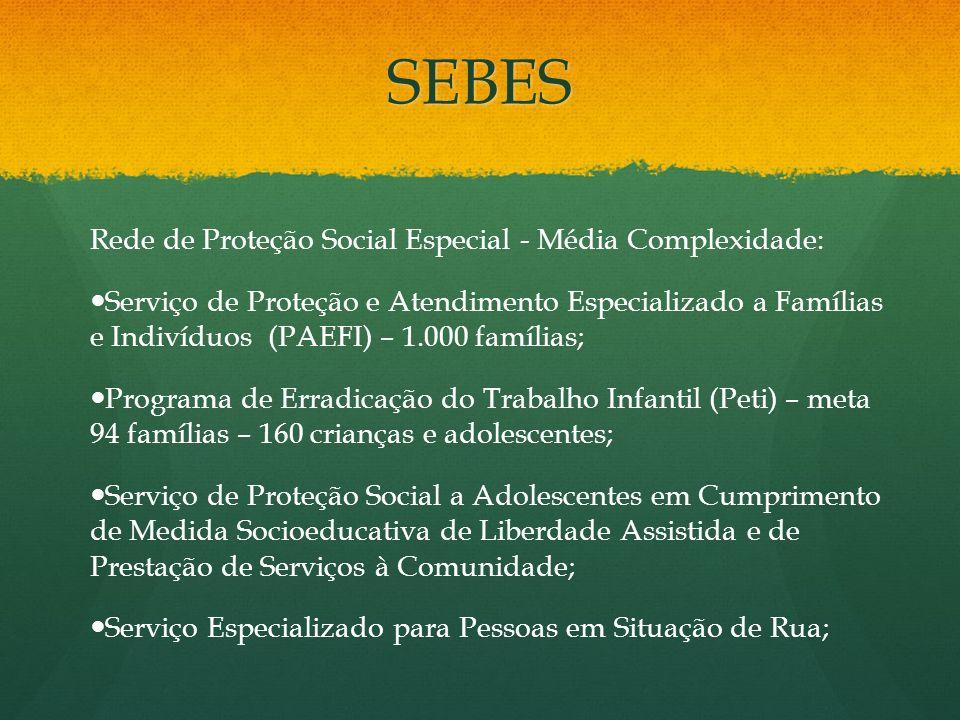 SEBES Rede de Proteção Social Especial - Média Complexidade: