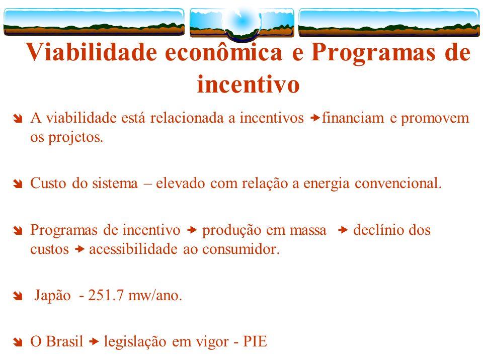 Viabilidade econômica e Programas de incentivo