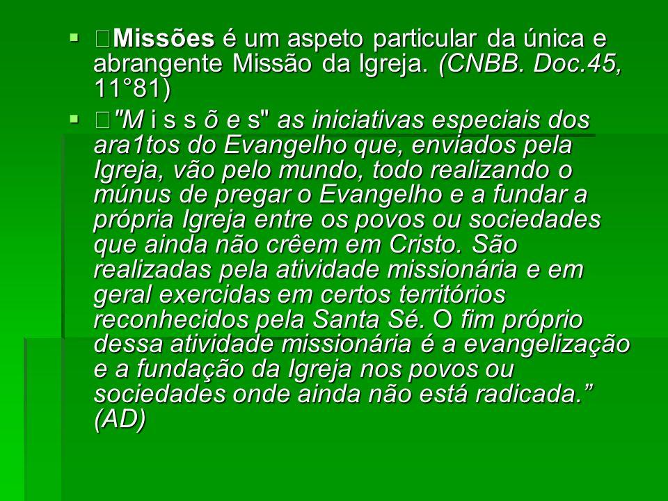 Missões é um aspeto particular da única e abrangente Missão da Igreja