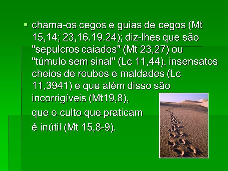 chama-os cegos e guias de cegos (Mt 15,14; 23,16. 19