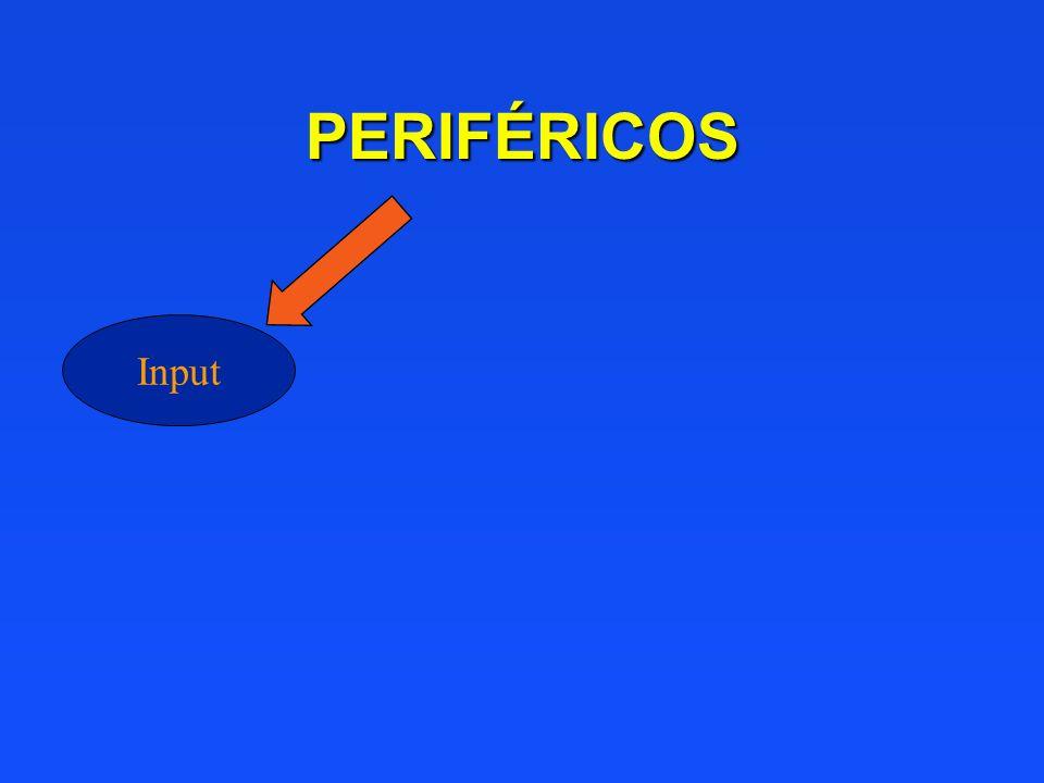 PERIFÉRICOS Input