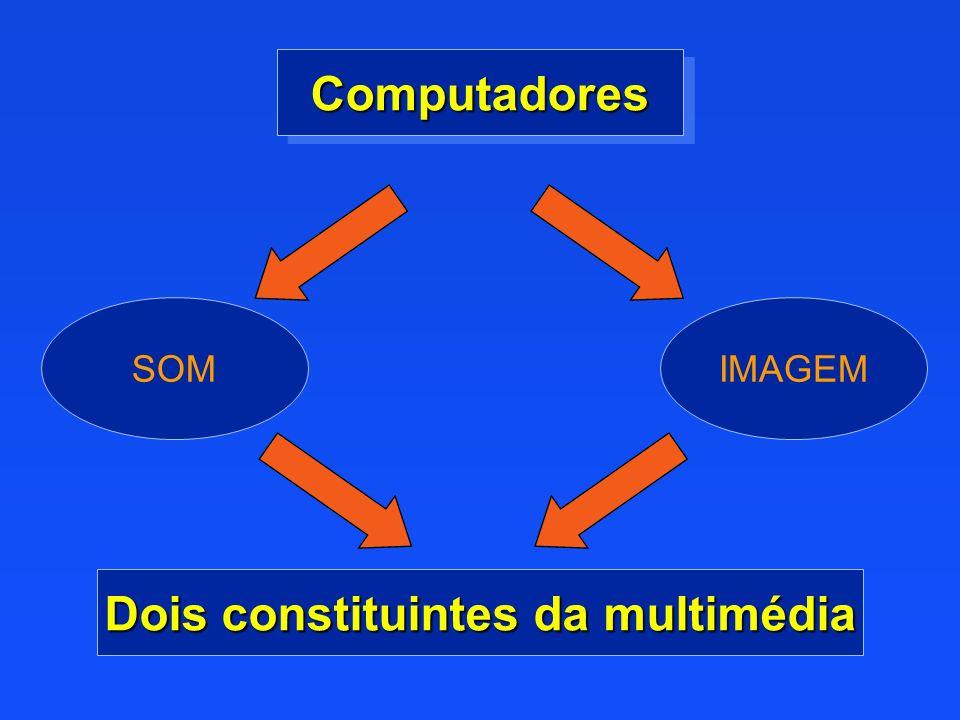 Dois constituintes da multimédia