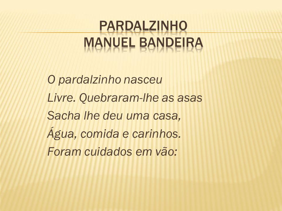 Pardalzinho Manuel Bandeira