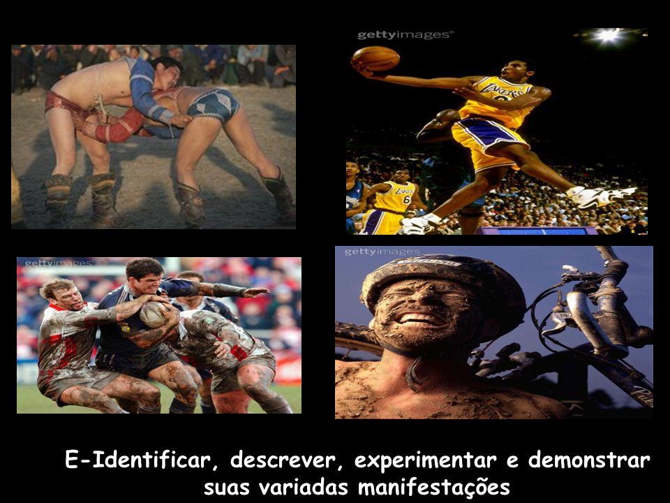 E-Identificar, descrever, experimentar e demonstrar suas variadas manifestações