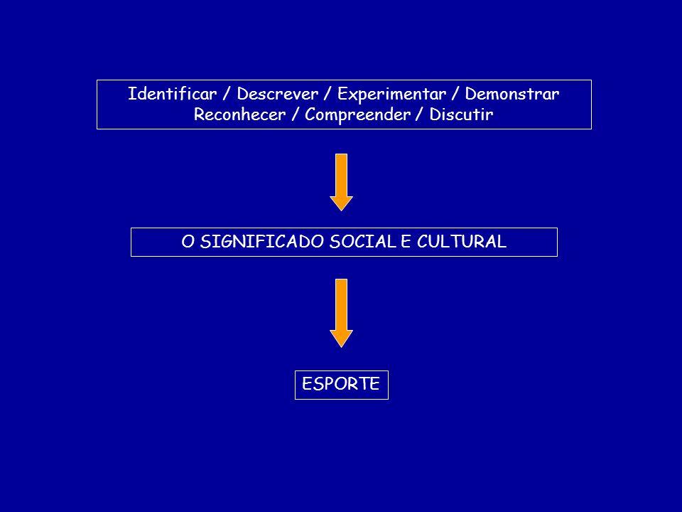 Identificar / Descrever / Experimentar / Demonstrar