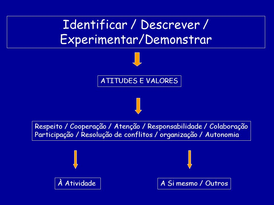 Identificar / Descrever / Experimentar/Demonstrar