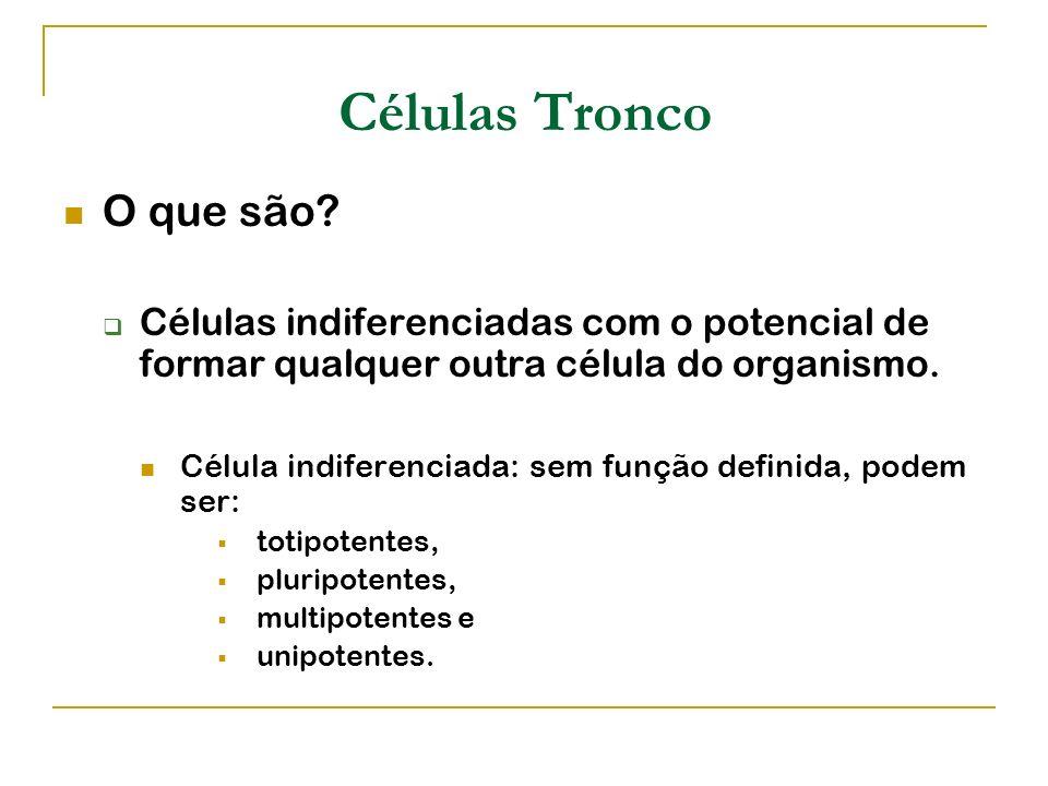Células Tronco O que são