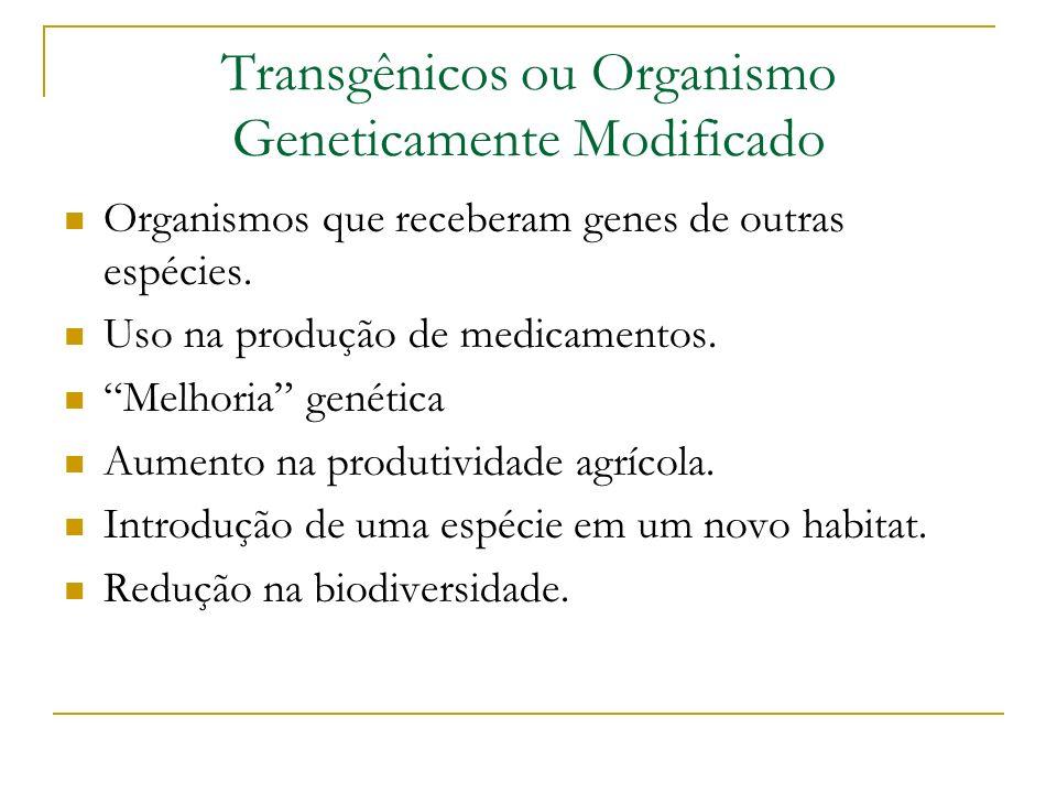 Transgênicos ou Organismo Geneticamente Modificado