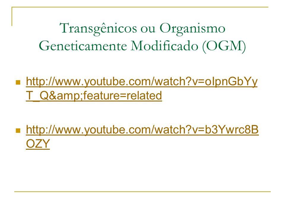 Transgênicos ou Organismo Geneticamente Modificado (OGM)