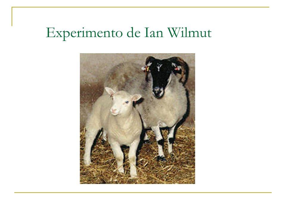 Experimento de Ian Wilmut