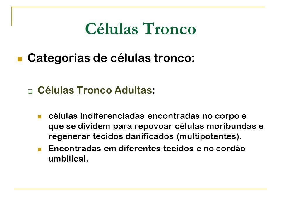 Células Tronco Categorias de células tronco: Células Tronco Adultas: