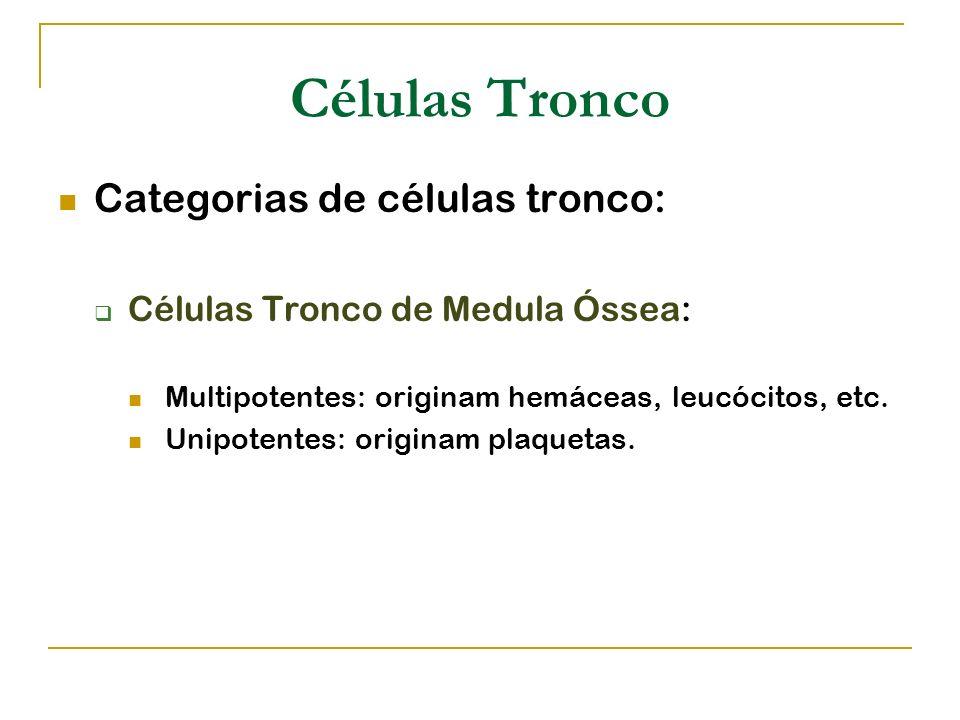 Células Tronco Categorias de células tronco: