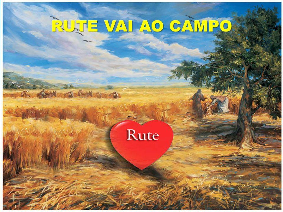 RUTE VAI AO CAMPO